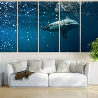Underwater World White Shark Wall Art / Aquatic Fine Art Print Aquarium / Sea Life Art Nautical Ocean Art Canvas Print Room Wall Art