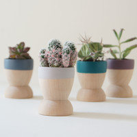 Wind and Willow Home: One Mini Planter, available in multiple colors