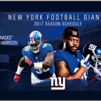 NEW 3X5 FT NEW YORK NY GIANTS COUNTRY OFFICALLY LICENSED FREMONT DIE NFL FLAG, 04