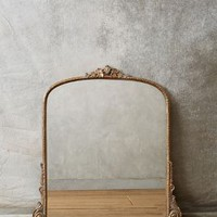 Gleaming Primrose Mirror by Anthropologie Brown