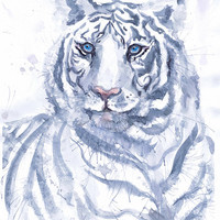 Snow tiger  watercolor painting, wildcat,  tiger wall decor,  animal art print, Illustration, Feng Shui decor, living room decor,