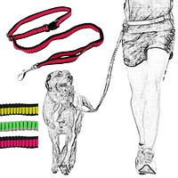 Hands Free Dog Leash For Running Walking Hiking w/Elastic Bungee