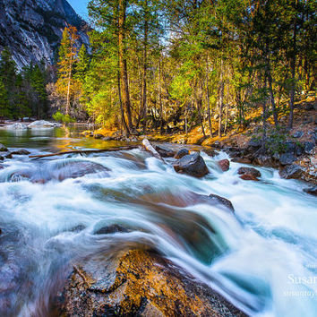Yosemite River Print, California Print, Tenaya Creek Photo, Sierra Nevada, John Muir, Sierra Nevada, Fine Art, Yosemite Art, Large Canvas