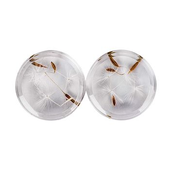 Dandelion Seeds Acrylic Transparent Flower Ear Plug and Tunnnels Piercings Gauges Jewelry