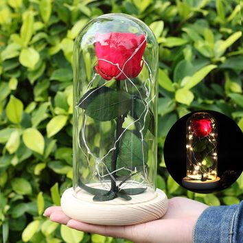 Luminescence PreservedFreshFlower Beauty and The Beast Red Rose In A Glass Dome on A Wooden Base for Valentine's Gifts