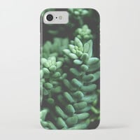 Succulent plants iPhone & iPod Case by VanessaGF