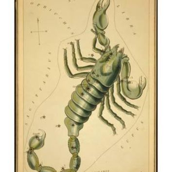 Scorpius Constellation, Zodiac Sign, 1825