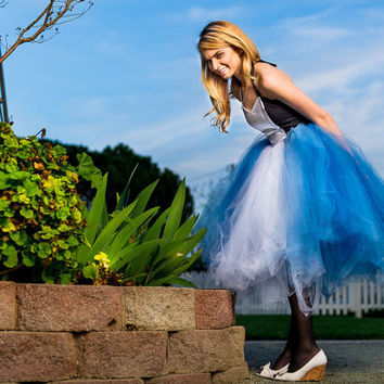 Alice in Wonderland adult tutu dress, Alice in wonderland tutu, adult tutu dress, adult costume