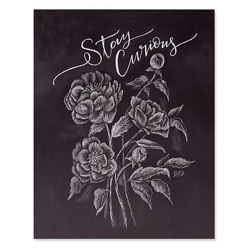 Stay Curious - Print & Canvas