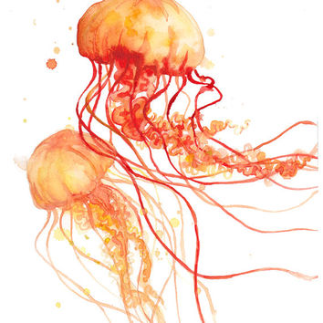 Orange Fire Jellyfish - Print - Abstract - Watercolor - Art - Gifts - Decor