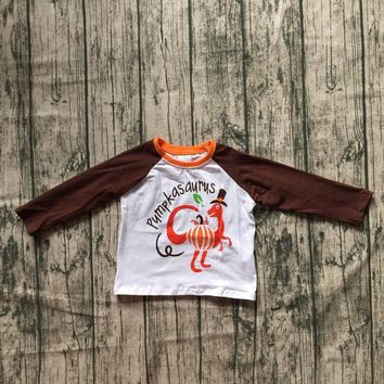 thanksgiving day baby boys children clothes boutique outfits top t-shirts raglans Dinosaur brown turkey print cotton O-neck new