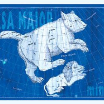 Ursa Major and Leo Minor #3 20x30 poster
