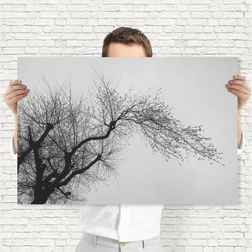 Black and White 12x18 Print - Tree Wall Art, Digital Download | Minimal Nature Photography by Mila Tovar