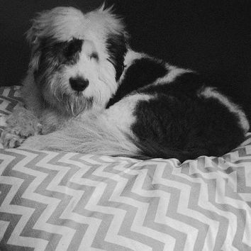 Designer Dog Cat Pet Bed Duvet Cover : Choose from 100s of Premier Print Fabrics Zig Zag Chevron, Stripes, Ikat, Geometric .....