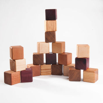 Wood Toy Blocks Set of  20, 5 species of wood Organic toy Learning toys for toddlers Montessori toy Handmade Fine Motor Skills