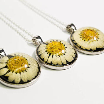 Real daisy necklace, daisy flower necklace, preserved daisy jewelry, bridesmaid gift, friend gift, nature inspired jewelry, gift for her