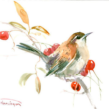Carolina Warbler original watercolor painting brown red songbird art
