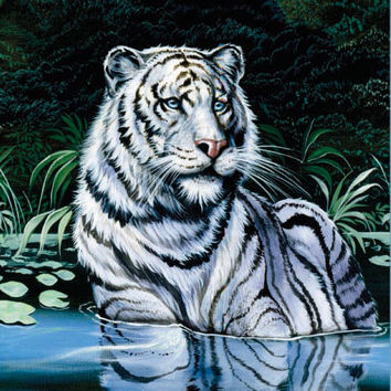 Wading White Tiger Signature Queen Blanket - Free Shipping in the Continental US!