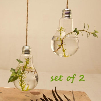 SET of 2 Creative Hanging Clear Glass Light Bulb Vase = 1931818436