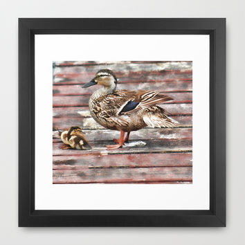 Mama Duck and her Ducklings Framed Art Print by Photography By Pamela
