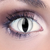 Funky White Cat Contact Lenses