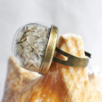 Dandelion seed  ring, glass globe ring filled with dandelion seeds in bronze.