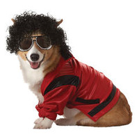 Pet Pop King Halloween Costume - Kmart