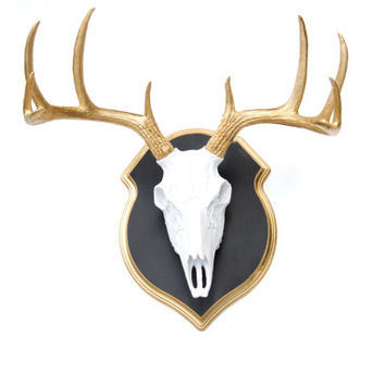 Faux Taxidermy - White Deer Skull - Gold Antlers - Wall Mount With Matching Plaque BSS010817