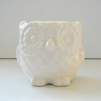 Ceramic Mini Owl Desk Planter Vintage Design in White Sponge Holder