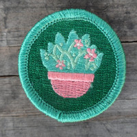 Botany / Plant 'Foraging' Scout-Style Merit Badge