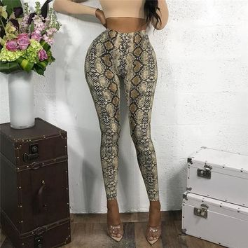 Women's Fashion Winter Sexy Skinny Pants Leggings [1921865187425]
