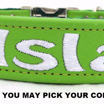 "Dog Collar: Leather w/ Nylon Webbing - 1"" Wide - Personalized - Non-Adjustable (Sizes 12-22) Example 1"