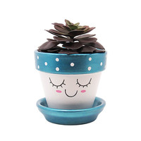 Succulent Planter, Terracotta Pot, Cute Face Planter, Air Plant Holder, Plant Pot, Flower Pot, Indoor Planter, Succulent Pot, Blue Planter