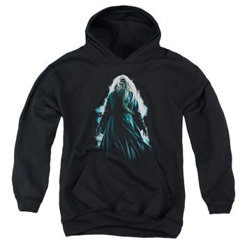 Harry Potter - Dumbledore Burst Youth Pull Over Hoodie
