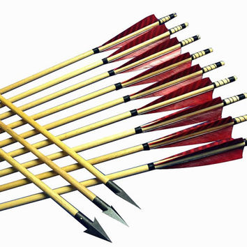 24pcs Self Nocked Archery Wooden Hunting Arrows For Traditional Recurve Bow&Longbow