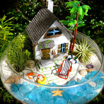 "Beachside Cottage Terrarium Kit ~ Beach House and Chair ~ 2 Air plants ~ 10"" Glass Bowl ~ Sea Turtle Option ~ Beach Decor ~ Christmas Gift"