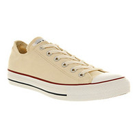 Converse ALL STAR OX LOW ECRU CANVAS Shoes - Converse Trainers - Office Shoes