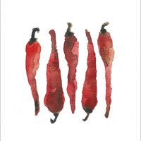Red hot chili peppers art print of original watercolor painting in hot red botanical limited edition, kitchen decor kitchen art