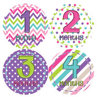 Baby Girl Monthly Baby Stickers Style #277