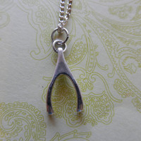 Silver Wishbone Charm Necklace