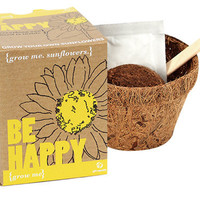 GROW ME: BE HAPPY PLANT KIT