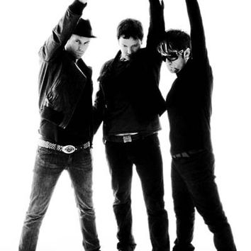Third Eye Blind Victory Band Portrait Poster 11x17