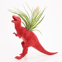 Dinosaur Planter with Air Plant Room Decor, T Rex, College Dorm Ornament, Red Plant Pot, Tillandsia Geekery