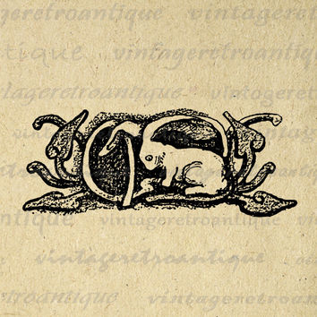 Rabbit Antique Printable Graphic Download Bunny Artwork Image Digital Vintage Clip Art for Transfers etc HQ 300dpi No.1651