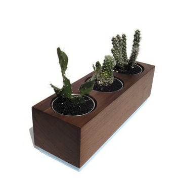 Succulent planter - Poplar Handmade Planter - Ocean blue with a natural finish, for birthday and wedding, wood planter.