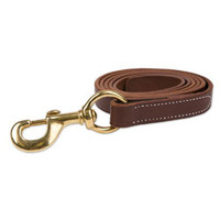 Leather Lead w/ Solid Brass Snap - Lead Ropes from SmartPak Equine