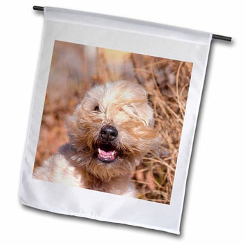 "3dRose fl_205878_2 ""Soft Coated Wheaten Terrier Portrait, Mr and Pr, "" Garden Flag, 18 x 27"""