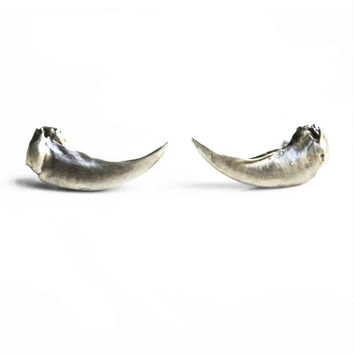Taxidea Studs Large Claw