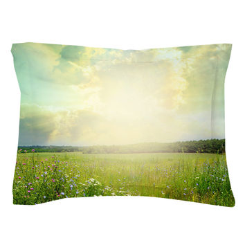 Field of Dreams Pillow Shams