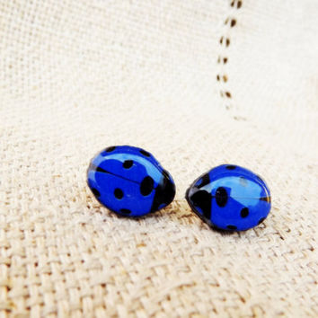 Ladybird earrings, Stud earrings, Blue ladybird, Little ladybug stud, Ladybug, Insect, Bug, Blue bug, Blue earrings, Blue jewelry, Gift